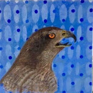 Hawk_2015
