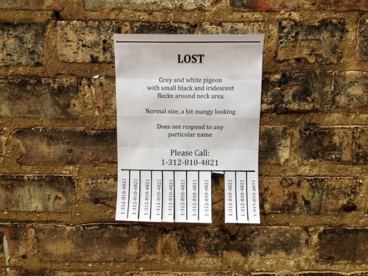 Lost_Flier